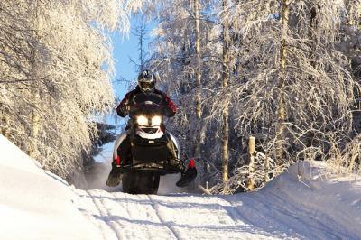 Half day snowmobile tour