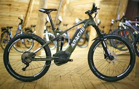 Electric Assist Fat Bike Rental / day (9-17)